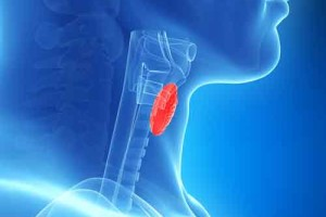 Thyroid-Vitality-Inc